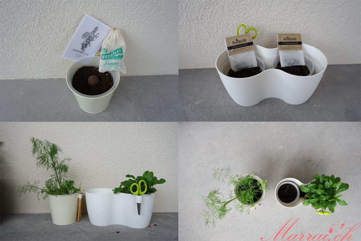 Handgemachte Seedballs & Seedpills von Gorilla Gardening aus Bern bei mir