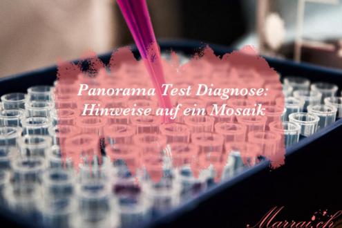 Panorama Test Diagnose: Hinweise auf ein Mosaik