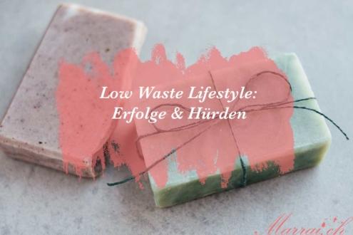 Low Waste Lifestyle Erfolge und Hürden
